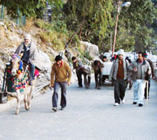 Maa Vaishano Devi Package (By Road)